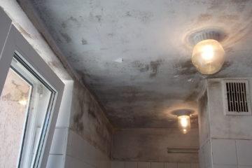 Jak pomalować sufity i ściany pokryte pleśnią i grzybem